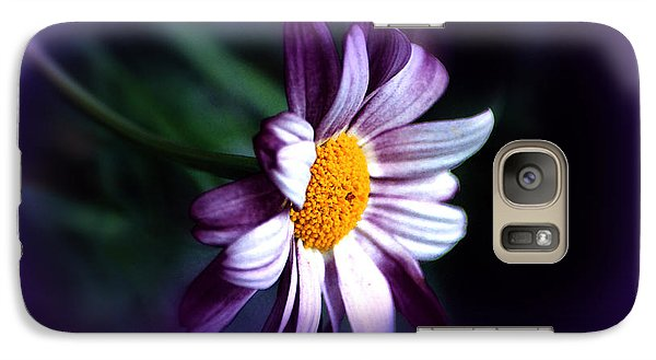Galaxy Case featuring the photograph Purple Daisy Flower by Susanne Van Hulst