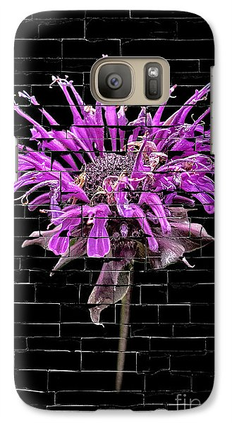 Galaxy Case featuring the photograph Purple Flower Under Bricks by Walt Foegelle