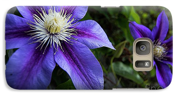 Galaxy Case featuring the photograph Purple Flowers by Brian Jones