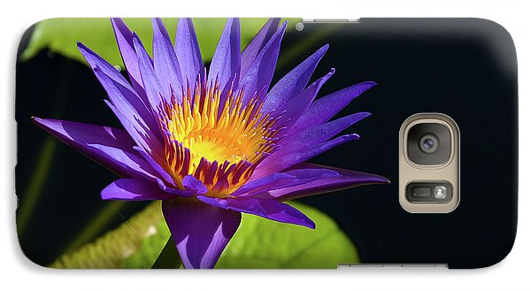 Galaxy Case featuring the photograph Purple Gold by Steve Stuller