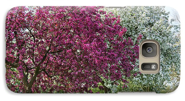 Galaxy Case featuring the photograph Purple Leaved Crab Apple Blossom In Spring by Tim Gainey