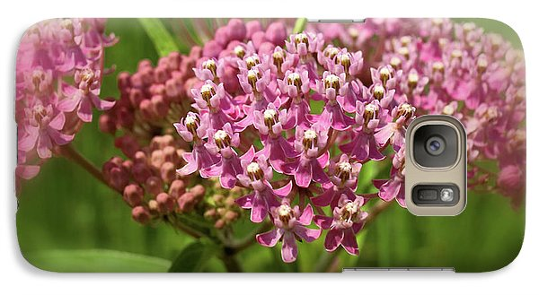 Galaxy Case featuring the photograph Purple Milkweed by Scott Kingery