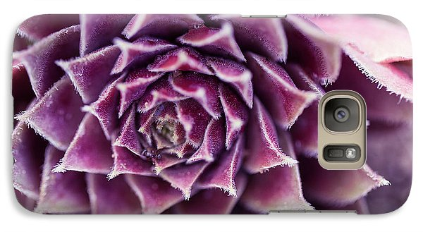 Galaxy Case featuring the photograph Purple Succulent Plant Blossom In Summer by Jingjits Photography