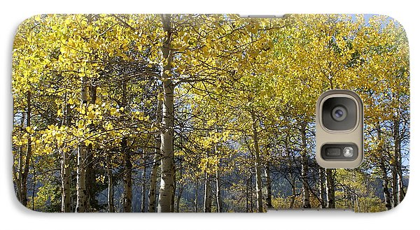 Galaxy Case featuring the photograph Quaking Aspens by Cynthia Powell