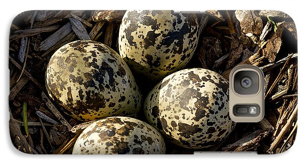 Quartet Of Killdeer Eggs By Jean Noren Galaxy S7 Case