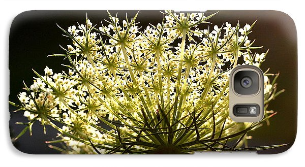 Galaxy Case featuring the photograph Queen Anne's Lace by Diane Merkle