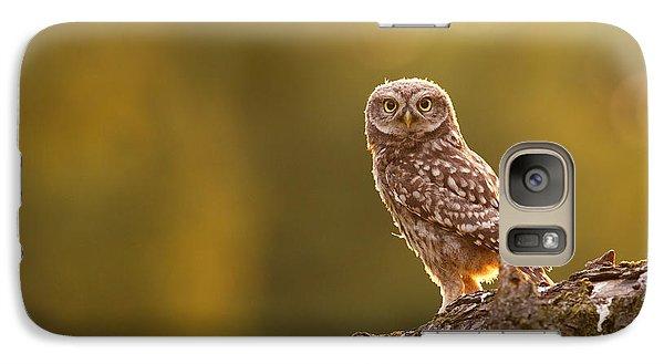 Qui, Moi? Little Owlet In Warm Light Galaxy S7 Case