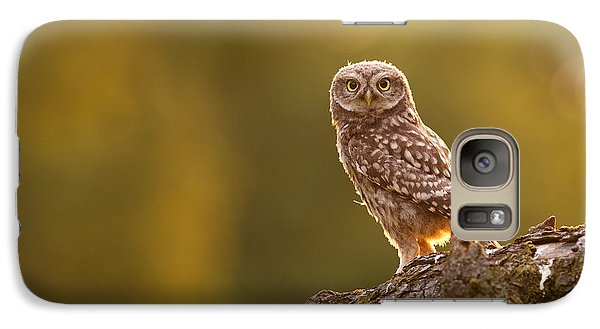 Qui, Moi? Little Owlet In Warm Light Galaxy S7 Case by Roeselien Raimond