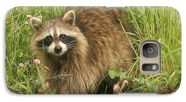 Galaxy Case featuring the photograph Raccoon  by Doris Potter
