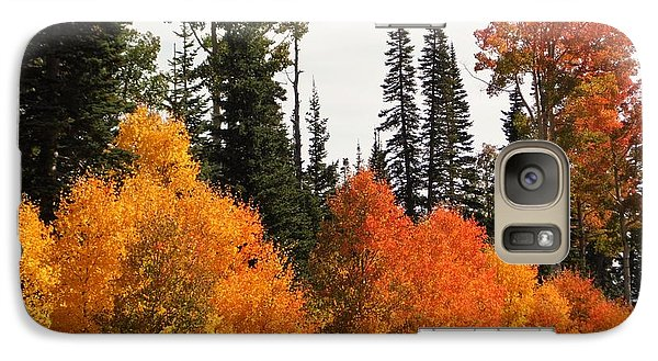Galaxy Case featuring the photograph Radiant Autumnal Forest by Deborah Moen