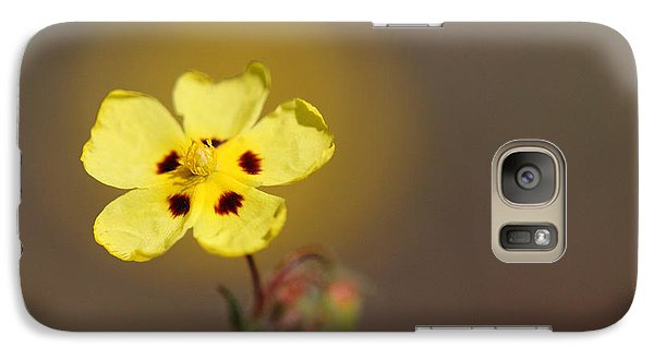 Galaxy Case featuring the photograph Radiate by Richard Patmore