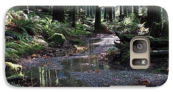 Galaxy Case featuring the photograph Rainforest Trail 2 by Sharon Talson