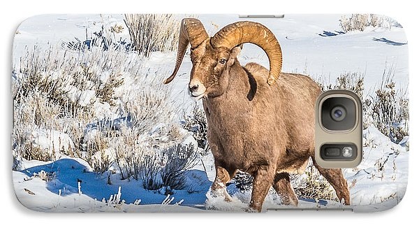 Galaxy Case featuring the photograph Ram In Rut by Yeates Photography
