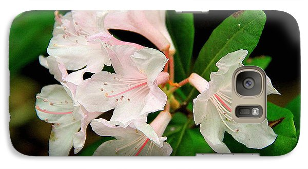 Galaxy Case featuring the photograph Rare Florida Beauty - Chapmans Rhododendron by Barbara Bowen