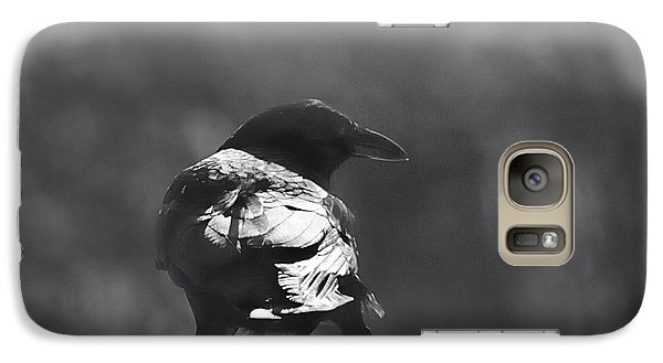 Galaxy Case featuring the photograph Raven In The Sun by Susan Capuano