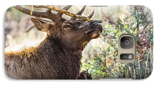 Galaxy Case featuring the photograph Ready For Rut by Yeates Photography