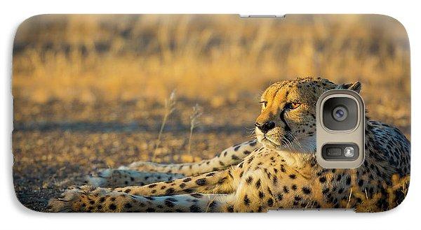 Reclining Cheetah Galaxy S7 Case