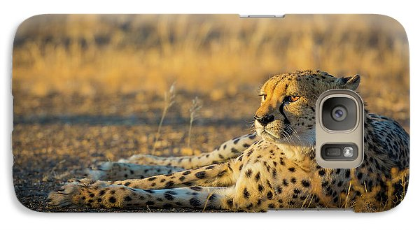 Reclining Cheetah Galaxy Case by Inge Johnsson