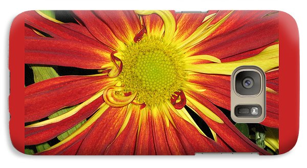 Galaxy Case featuring the photograph Red And Yellow Flower by Barbara Yearty
