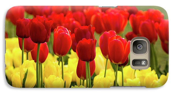 Galaxy Case featuring the photograph Red And Yellow Tulips by Mary Jo Allen