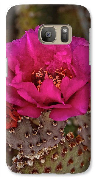 Galaxy Case featuring the photograph Red Beavertail Cactus Bloom by Robert Bales
