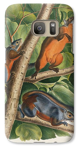 Red Bellied Squirrel  Galaxy S7 Case by John James Audubon