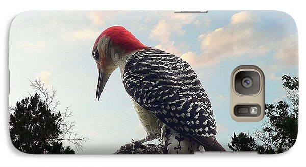 Red-bellied Woodpecker - Tree Top Galaxy S7 Case by Al Powell Photography USA