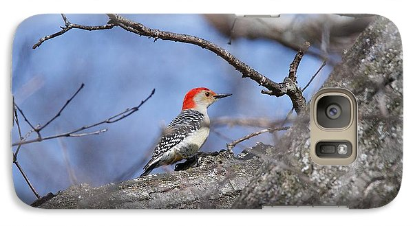 Galaxy Case featuring the photograph Red-bellied Woodpecker 1134 by Michael Peychich