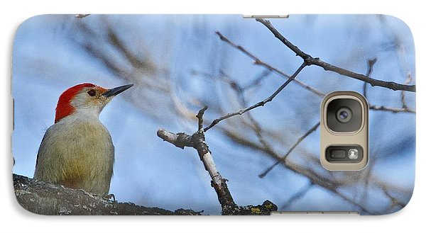 Galaxy Case featuring the photograph Red-bellied Woodpecker 1137 by Michael Peychich