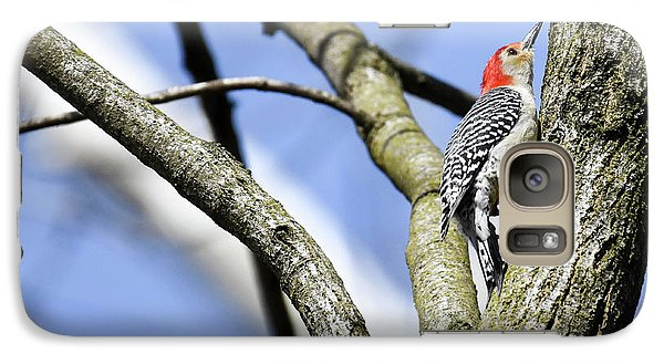 Galaxy Case featuring the photograph Red-bellied Woodpecker by Gary Wightman