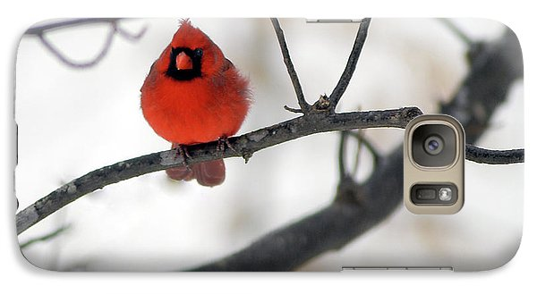 Galaxy Case featuring the photograph Red Cardinal In Snow by Marie Hicks