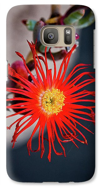 Galaxy Case featuring the photograph Red Crab Flower by Bruno Spagnolo