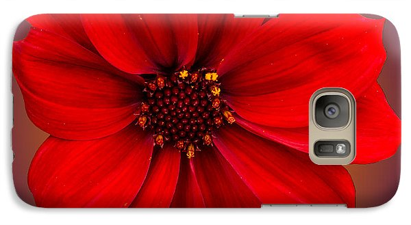 Galaxy Case featuring the photograph Red Dahlia-bishop-of-llandaff by Brian Roscorla