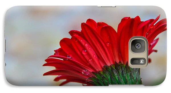 Galaxy Case featuring the photograph Red Daisy  by John Harding
