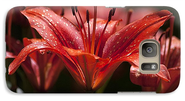 Galaxy Case featuring the photograph Red Day Lily 20120615_52a by Tina Hopkins
