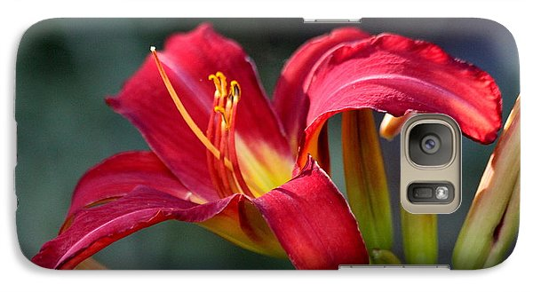 Galaxy Case featuring the photograph Red Day Lily  by Irina Hays