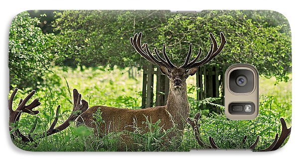 Red Deer Stag Galaxy S7 Case