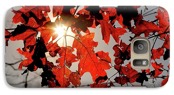Galaxy Case featuring the photograph Red Fall Leaves by Meta Gatschenberger