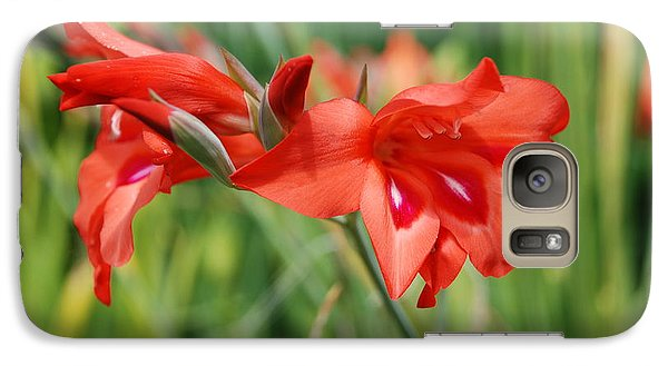 Galaxy Case featuring the photograph Red Flower by Jan Daniels