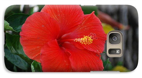 Galaxy Case featuring the photograph Red Flower by Rob Hans