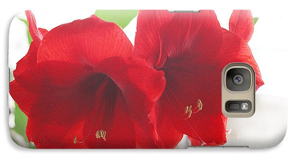 Galaxy Case featuring the photograph Amaryllis by Rebecca Harman