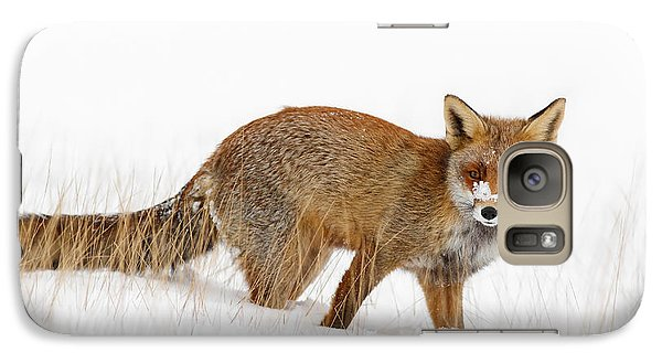 Red Fox In A Snow Covered Scene Galaxy S7 Case