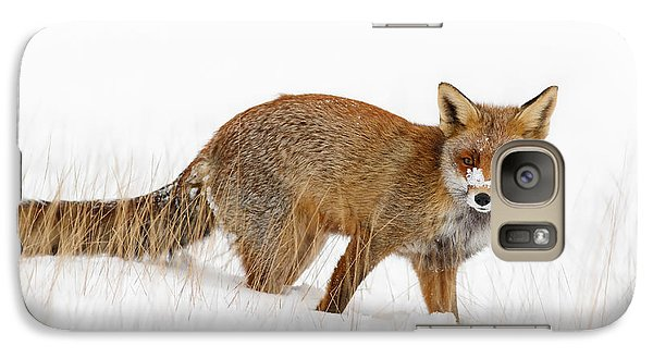 Red Fox In A Snow Covered Scene Galaxy Case by Roeselien Raimond