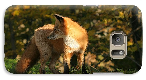 Galaxy Case featuring the photograph Red Fox In Shadows by Doris Potter