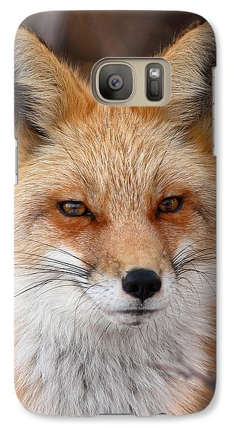 Galaxy Case featuring the photograph Red Fox In Winter Ruff by Max Allen