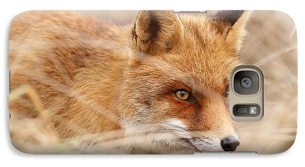 Red Fox On The Hunt Galaxy S7 Case