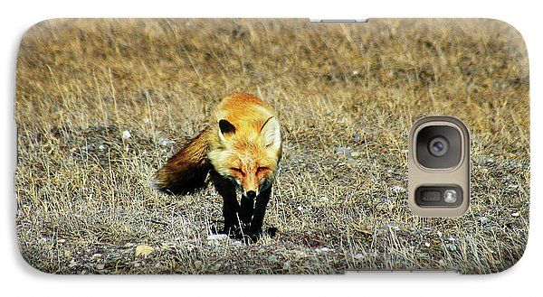 Galaxy Case featuring the photograph Red Fox On The Tundra by Anthony Jones