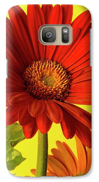 Galaxy Case featuring the photograph Red Gerbera Daisy 2 by Richard Rizzo