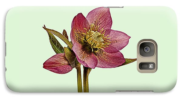 Galaxy Case featuring the photograph Red Hellebore Green Background by Paul Gulliver