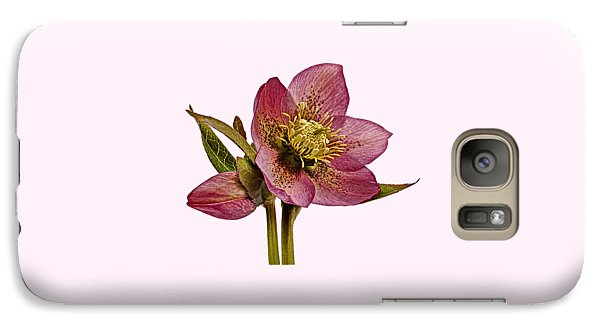 Galaxy Case featuring the photograph Red Hellebore Transparent Background by Paul Gulliver